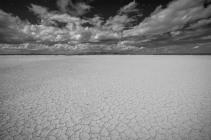 """The Barren Desert 54"""" x 36""""   $4,450"""