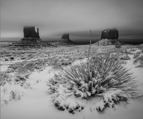 "Winter's Veil 18"" x 12"" | $1,375"
